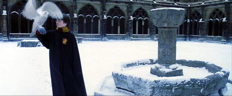 This screen cap and the one above it show scenes from Harry Potter and The Sorcerer's Stone which were filmed at the Durham cloisters.